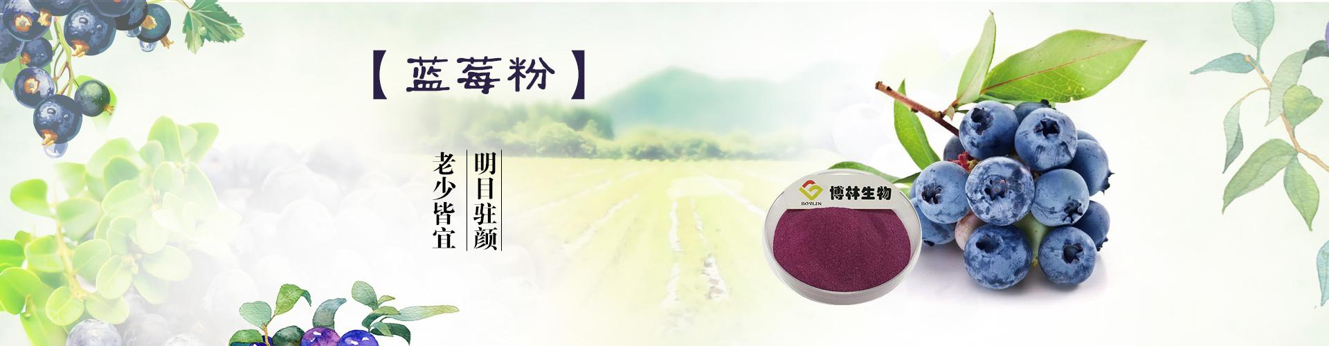 水果蔬菜粉